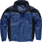 Dickies – Winterjacket Industry300 for embroidery and printing