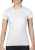 Women`s Fashion Basic Fitted Tee (Damen)